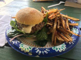 dino gourmet maui burger